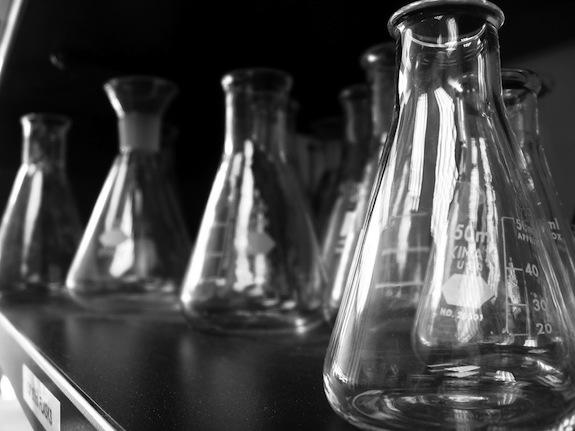 Sevan los científicos… ¿vuelven las suecas?