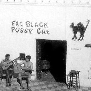 Los gatos de Torremolinos