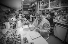 José López Barneo: «En Canadá es más fácil hacer investigación en pacientes que en animales de experimentación»