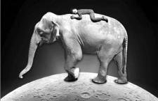 Yotambién me enamoré de un elefante
