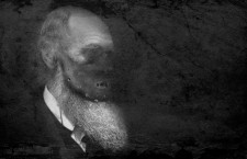 Charles Darwin. Ilustración: Emiliano Bruner