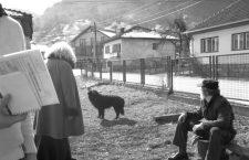 La parálisis bosnia