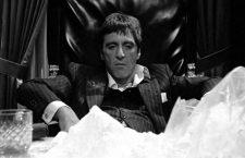 ¿Cuál es la mejor película sobre el narcotráfico?