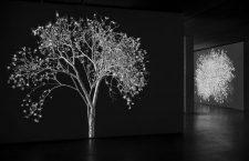 La botánica futurista de Jennifer Steinkamp