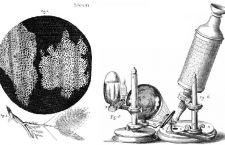 ¿Cómo saben los científicos qué investigar?