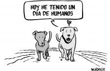 Día de humanos