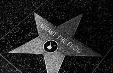 Guía inusual para pasear por las estrellas
