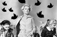 La ira tuitera caerá sobre ti: del victimismo al exhibicionismo moral