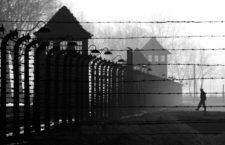 Auschwitz, 2005. Fotografía: Janek Skarzynski / Getty.