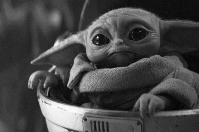 Baby Yoda y la neotenia